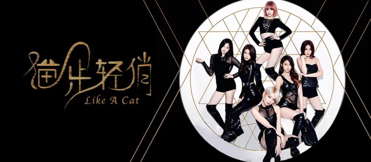 【韩舞片段】《AOA猫步轻俏》