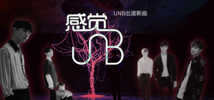 UNB《感觉》