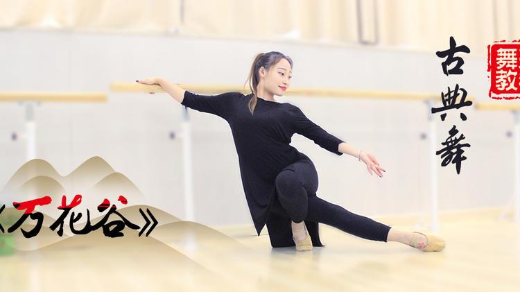 古典舞《万花谷》